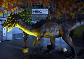 hsc-dino-wystawa-07